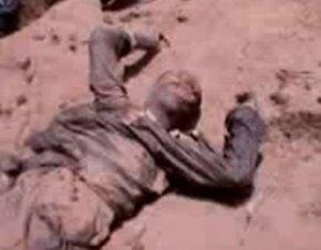 thiantacounes tués à mbour